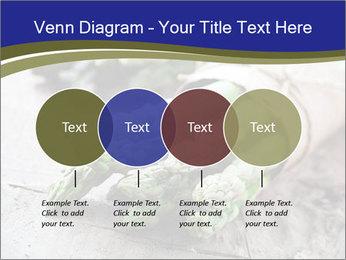 0000079108 PowerPoint Template - Slide 32