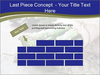 0000079108 PowerPoint Template - Slide 46