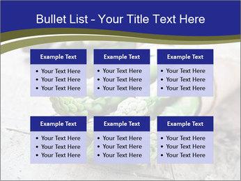 0000079108 PowerPoint Template - Slide 56
