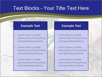 0000079108 PowerPoint Template - Slide 57