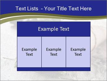 0000079108 PowerPoint Template - Slide 59