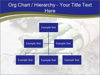 0000079108 PowerPoint Template - Slide 66