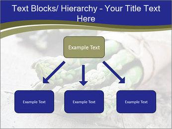 0000079108 PowerPoint Template - Slide 69