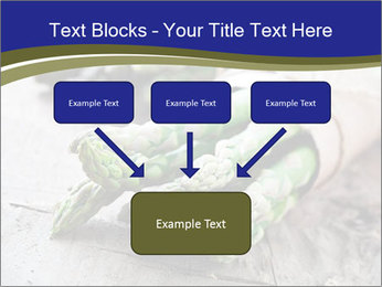 0000079108 PowerPoint Template - Slide 70