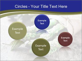 0000079108 PowerPoint Template - Slide 77