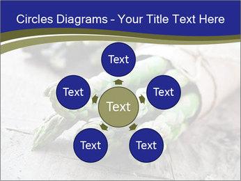 0000079108 PowerPoint Template - Slide 78