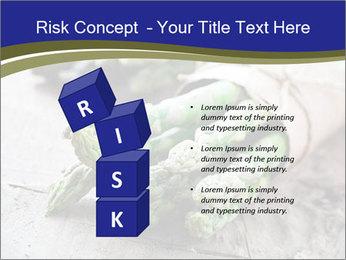 0000079108 PowerPoint Template - Slide 81