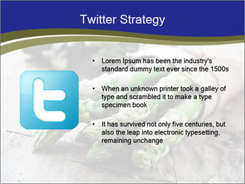 0000079108 PowerPoint Template - Slide 9