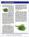 0000079108 Word Templates - Page 3