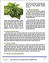 0000079108 Word Templates - Page 4