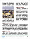 0000079109 Word Template - Page 4