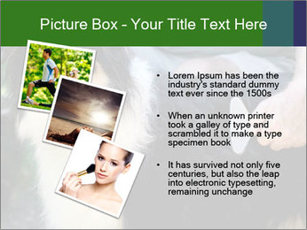 0000079113 PowerPoint Template - Slide 17