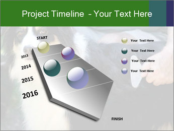 0000079113 PowerPoint Template - Slide 26