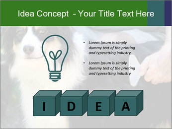 0000079113 PowerPoint Template - Slide 80