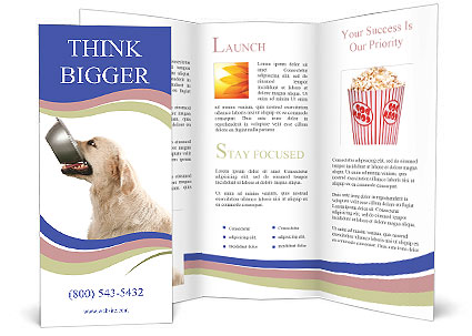 0000079116 Brochure Templates