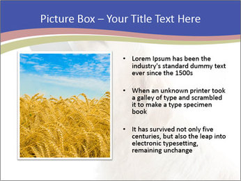0000079116 PowerPoint Templates - Slide 13