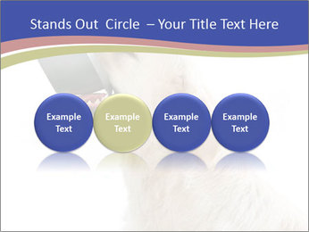 0000079116 PowerPoint Templates - Slide 76