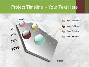 0000079131 PowerPoint Templates - Slide 26
