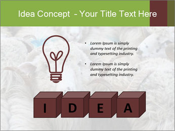 0000079131 PowerPoint Templates - Slide 80