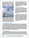 0000079138 Word Template - Page 4