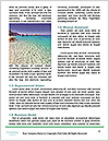 0000079141 Word Template - Page 4