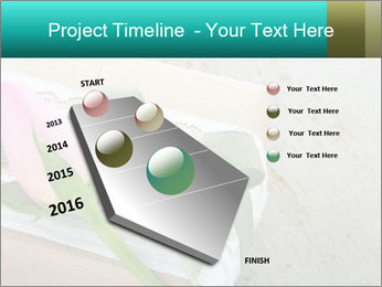 0000079142 PowerPoint Template - Slide 26