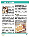 0000079142 Word Template - Page 3