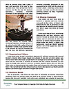 0000079144 Word Template - Page 4