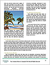 0000079159 Word Template - Page 4