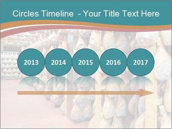 0000079163 PowerPoint Template - Slide 29