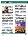 0000079165 Word Template - Page 3