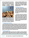 0000079165 Word Template - Page 4