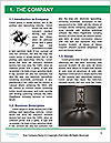 0000079166 Word Template - Page 3