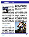 0000079168 Word Template - Page 3