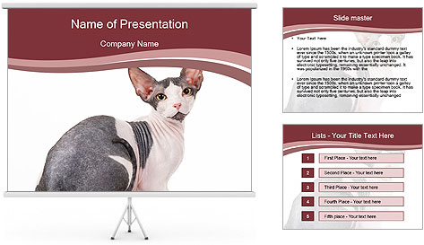 0000079171 PowerPoint Template