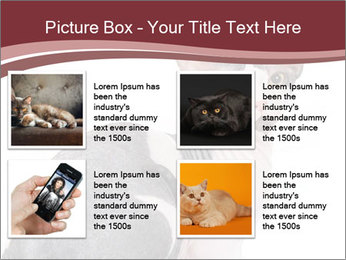 0000079171 PowerPoint Templates - Slide 14