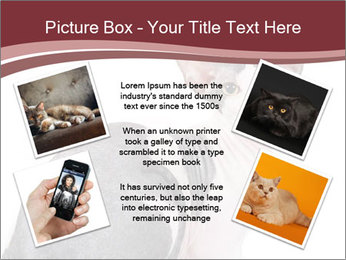 0000079171 PowerPoint Templates - Slide 24