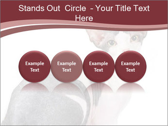 0000079171 PowerPoint Templates - Slide 76