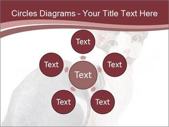 0000079171 PowerPoint Templates - Slide 78