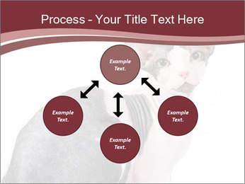 0000079171 PowerPoint Templates - Slide 91