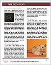 0000079171 Word Templates - Page 3