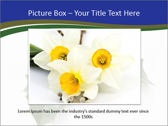 0000079182 PowerPoint Template - Slide 15