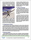 0000079184 Word Templates - Page 4