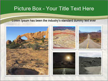 0000079194 PowerPoint Template - Slide 19
