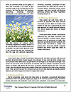 0000079195 Word Templates - Page 4