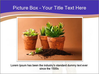 0000079197 PowerPoint Template - Slide 15
