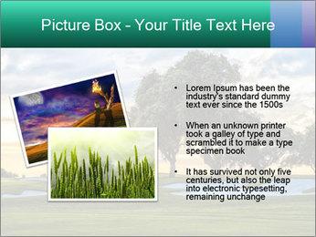0000079198 PowerPoint Template - Slide 20
