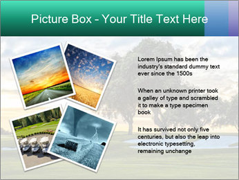 0000079198 PowerPoint Template - Slide 23
