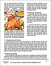 0000079199 Word Templates - Page 4