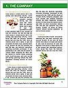 0000079201 Word Template - Page 3